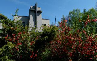Wiosna przed kościołem - okiem Proboszcza
